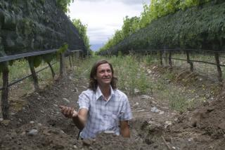 A hole of his own making: Matias Michelini in Finca Sophenia's Tupungato vineyards