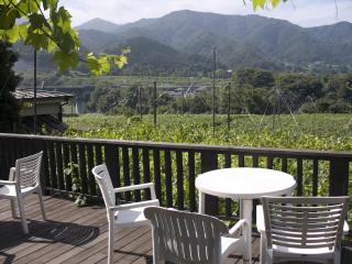 Yamanashi: a view from the terrace